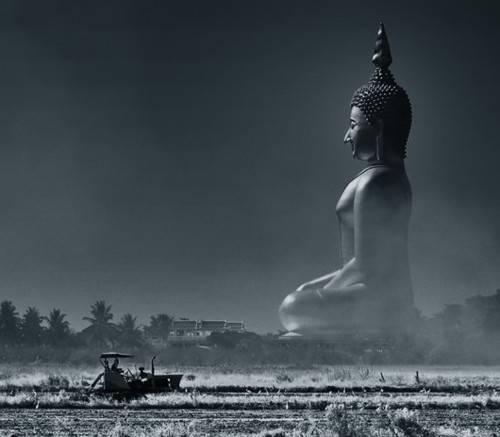 Bouddha - Page 3 Tumblr_mkbbx9RbNn1qdtzovo1_500