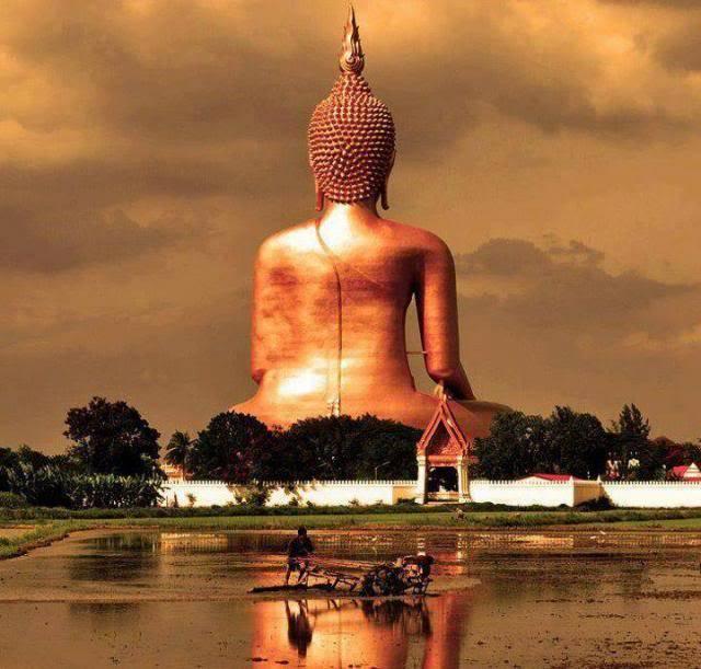 Bouddha - Page 3 Tumblr_msu56t6tyg1rek3nco1_1280