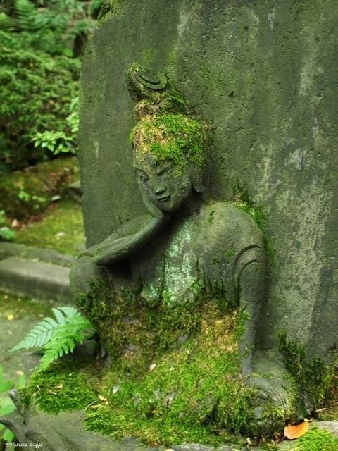 Bouddha - Page 3 Tumblr_nvg0hzqGPH1ssfvuco1_500