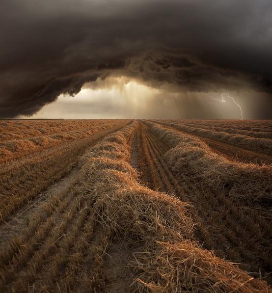 L'orage ~~ Les éclairs - Page 2 275423333432514947_gMOaG2S5_c