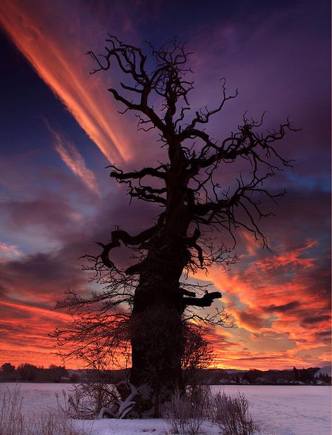 Le ciel et ses couleurs Tumblr_m7akmlHxKw1qju7zto1_500_zps1dd11af3