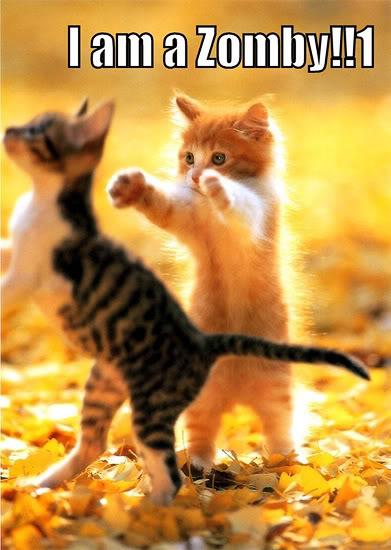 Pazzi come gatti Zombycat