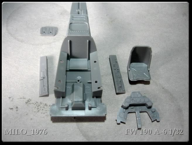 Focke Wulf FW 190 A6 1/32 IMG_0010
