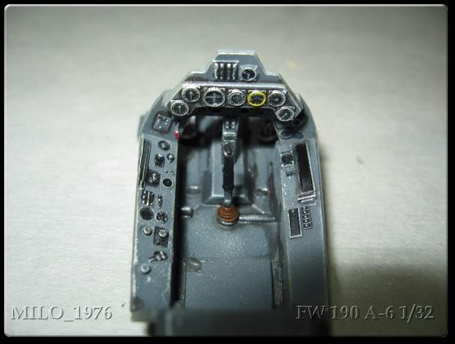 Focke Wulf FW 190 A6 1/32 IMG_0021