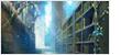 La bibliothèque centrale