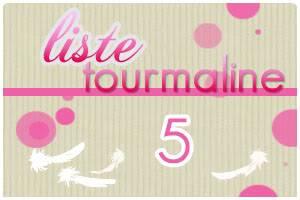 Dame Hasard va vous attribuer votre Plume  - Page 4 Tourmaline5