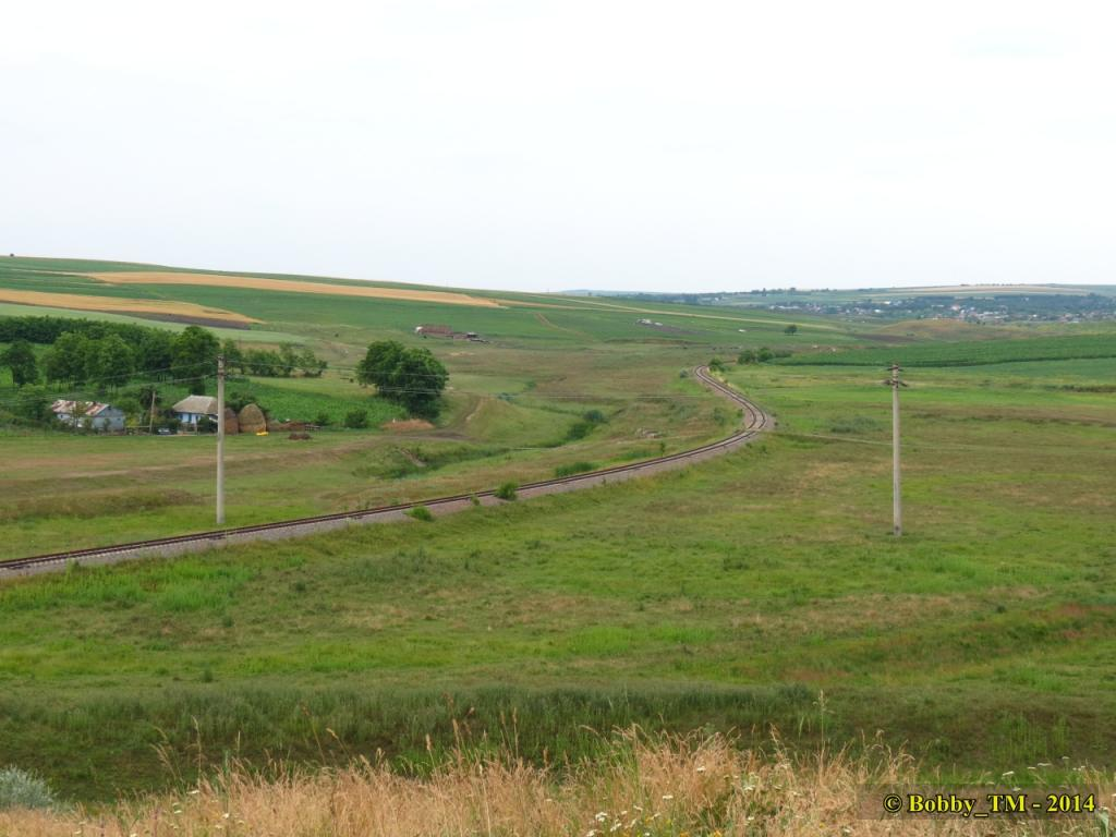 609 : Dingeni - Saveni - Drăguşeni - Pagina 4 IMG_3979_zps8a56c8fb