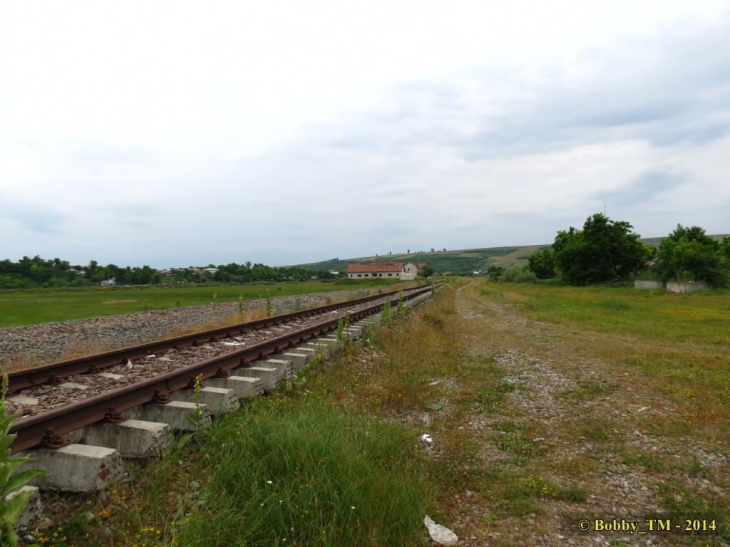609 : Dingeni - Saveni - Drăguşeni - Pagina 4 IMG_4082_zps21b67263