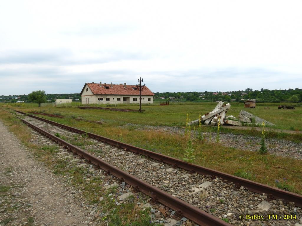 609 : Dingeni - Saveni - Drăguşeni - Pagina 4 IMG_4110_zpsaabd9c72