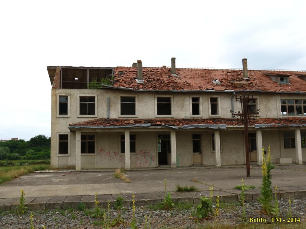 609 : Dingeni - Saveni - Drăguşeni - Pagina 4 IMG_4113_zps822acb66
