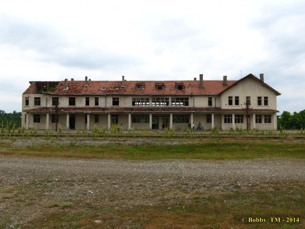 609 : Dingeni - Saveni - Drăguşeni - Pagina 4 IMG_4133_zps618af218