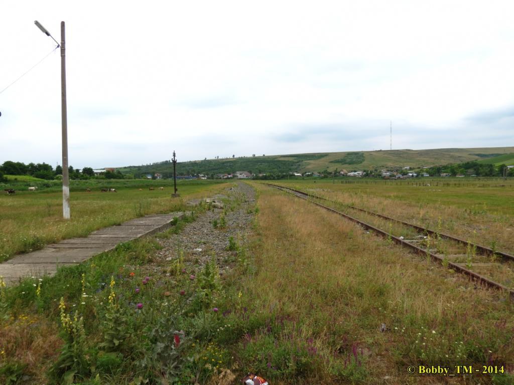 609 : Dingeni - Saveni - Drăguşeni - Pagina 4 IMG_4143_zps679dac91