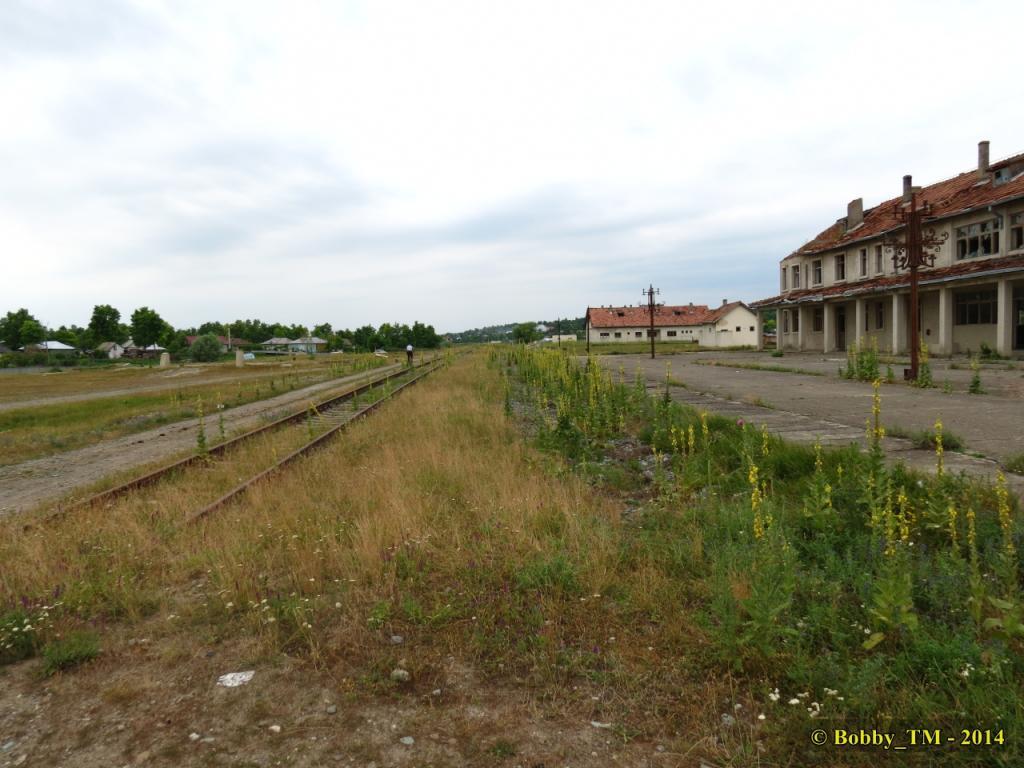 609 : Dingeni - Saveni - Drăguşeni - Pagina 4 IMG_4146_zps205b52d9