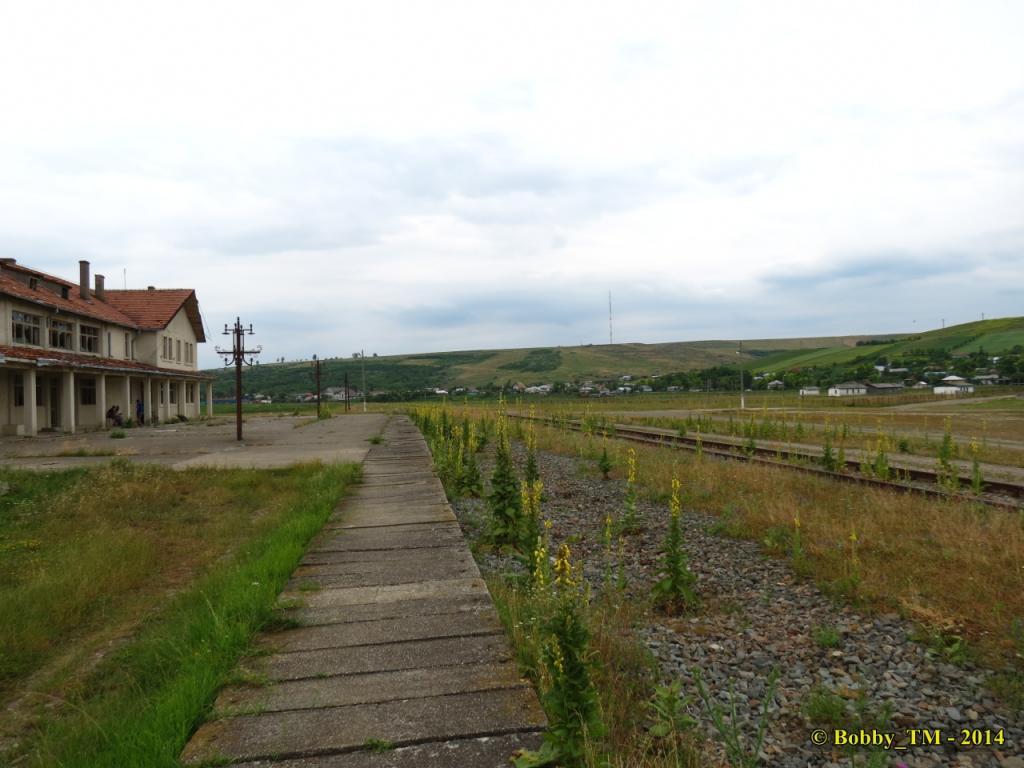 609 : Dingeni - Saveni - Drăguşeni - Pagina 4 IMG_4148_zpsb2907861