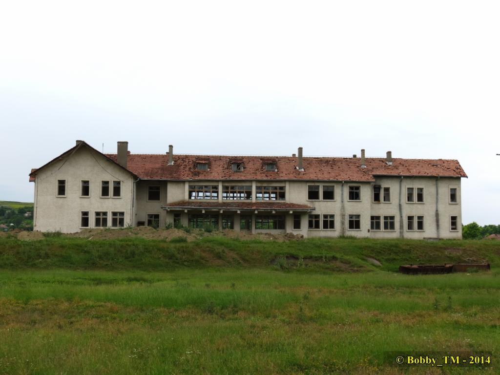 609 : Dingeni - Saveni - Drăguşeni - Pagina 4 IMG_4196R_zpsb133039e