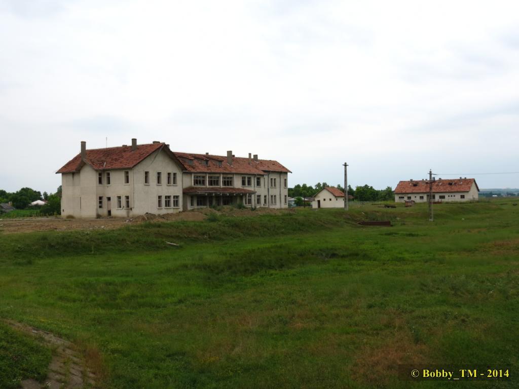 609 : Dingeni - Saveni - Drăguşeni - Pagina 4 IMG_4206_zpsea58f8b6