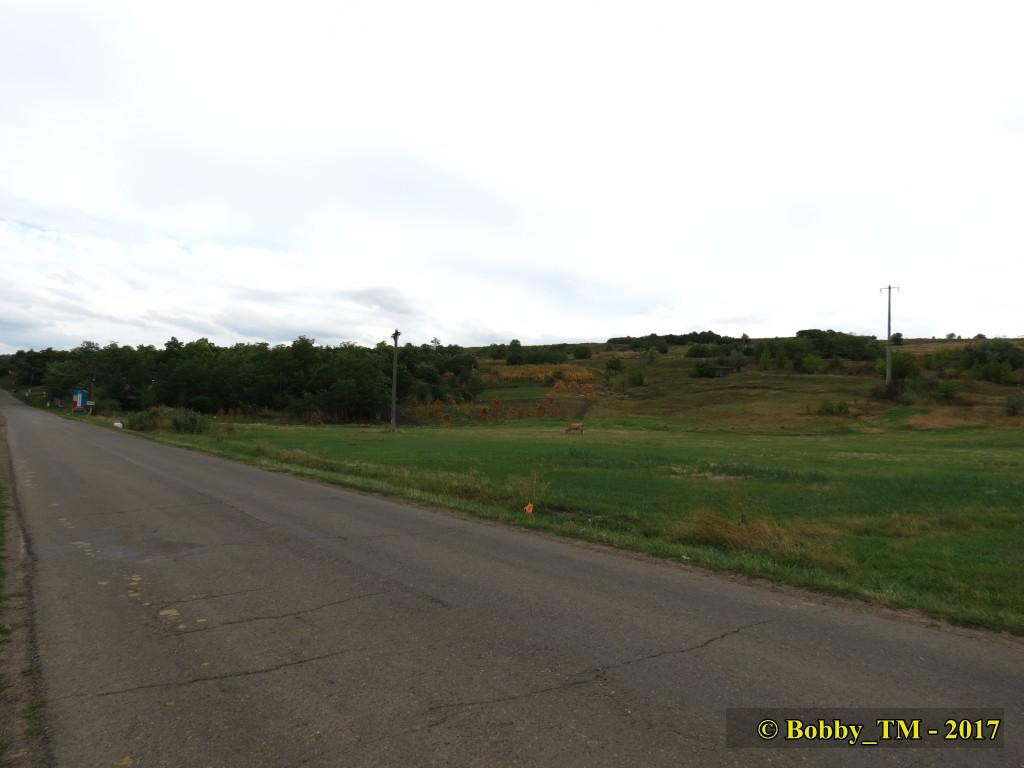 609 : Dingeni - Saveni - Drăguşeni - Pagina 5 IMG_2288_zpssakato1k