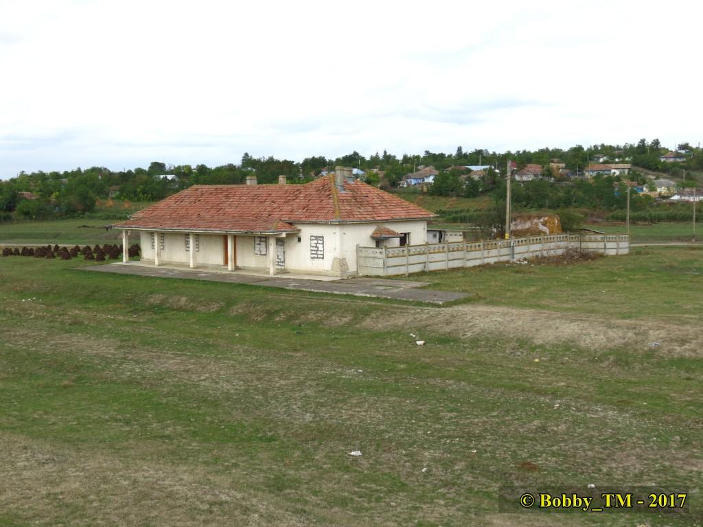 609 : Dingeni - Saveni - Drăguşeni - Pagina 5 IMG_2334_zpsry9wxle1