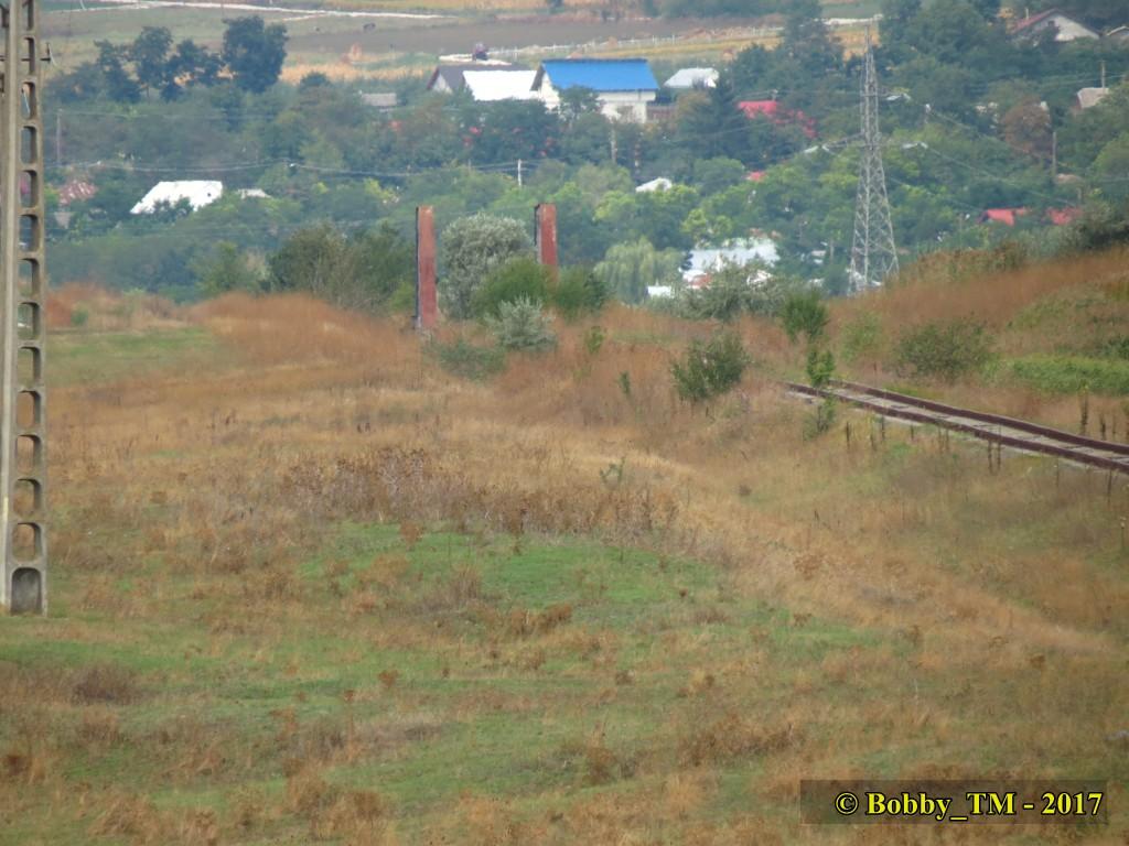609 : Dingeni - Saveni - Drăguşeni - Pagina 5 IMG_2353_zpscnls0jjd