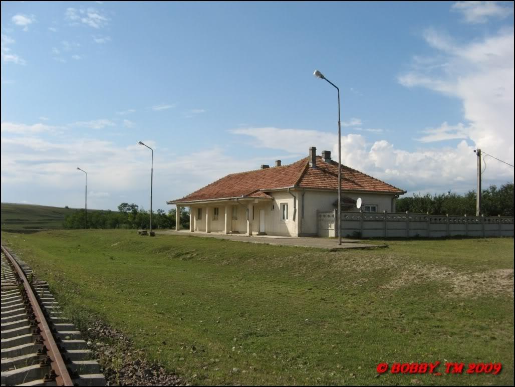 609 : Dingeni - Saveni - Drăguşeni - Pagina 5 IMG_0587
