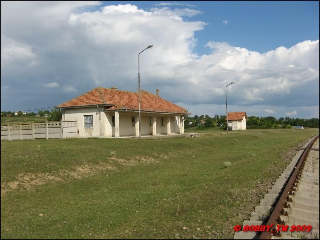 609 : Dingeni - Saveni - Drăguşeni - Pagina 5 IMG_0599