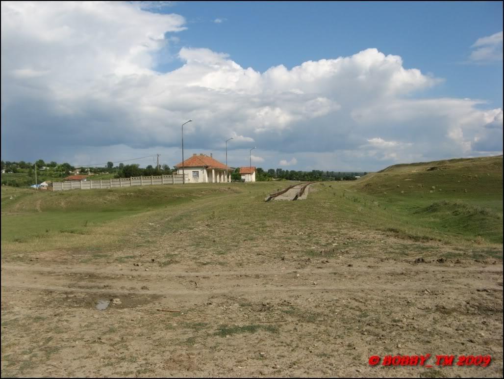 609 : Dingeni - Saveni - Drăguşeni - Pagina 5 IMG_0606