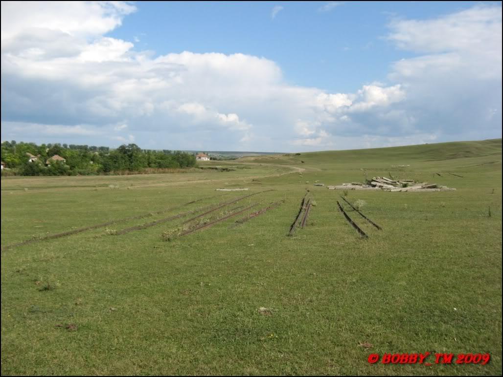 609 : Dingeni - Saveni - Drăguşeni - Pagina 4 IMG_0618