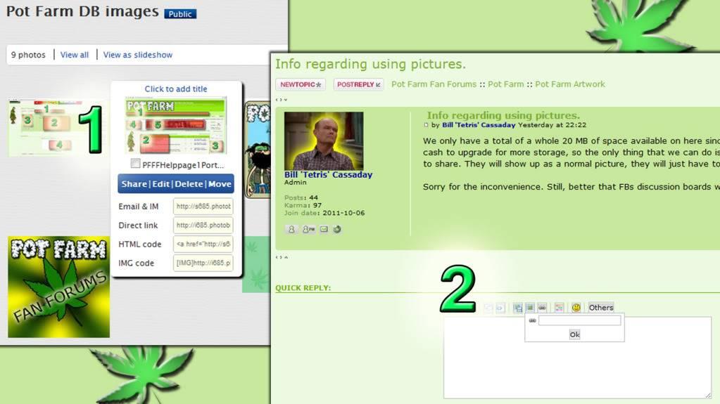 Info regarding using pictures. PFFFHelppage1Pictures