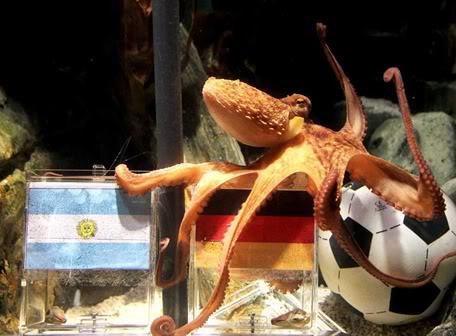 Pulpo Paul vaticina triunfo de Alemania sobre Argentina Pulpopierdearg