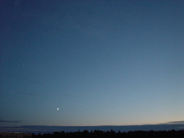 The Midnight Sun 2323001