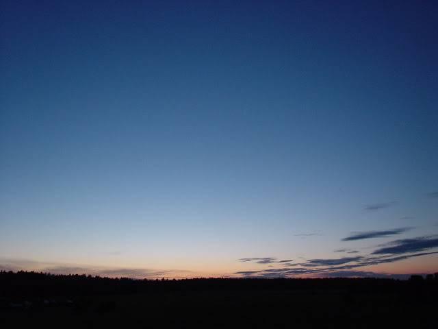The Midnight Sun 2323002