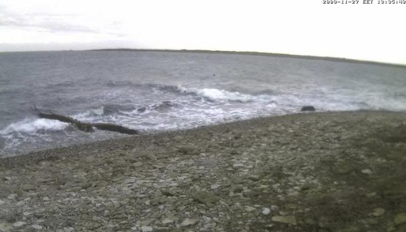 Grey Seal webcam - Page 4 WTE2009-11-2713-42-12-76