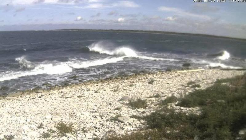 Grey Seal webcam Lained12009-08-2712-37-31-84