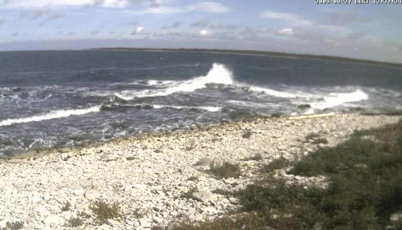 Grey Seal webcam Lained32009-08-2712-38-03-75