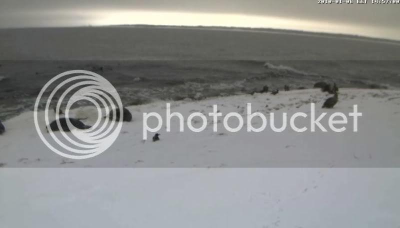Grey Seal webcam - Page 6 Vares12010-01-0614-57-31-04