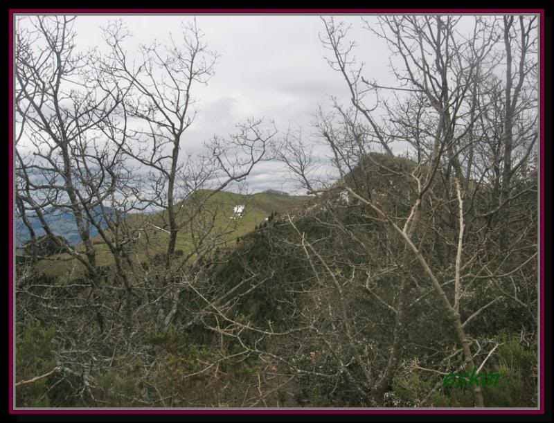 CORDAL DE CELADILLA  ( balmaseda - zalla) 17-3-13 Zeladilla35