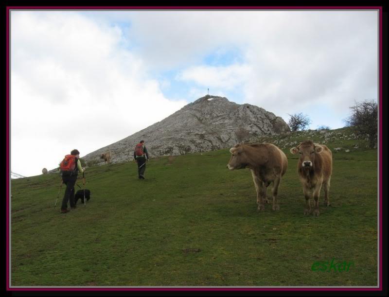PEÑA TREMAYA 1443 mts (montaña palentina) P19