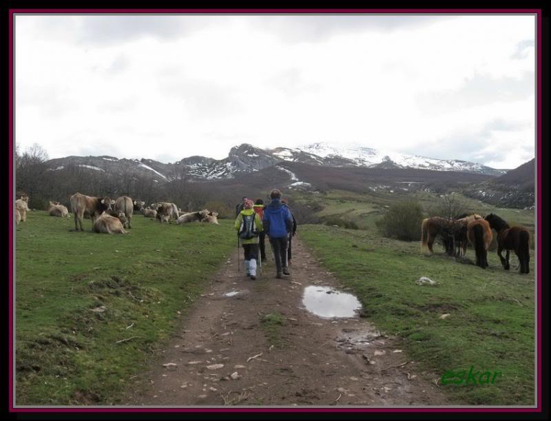 PEÑA TREMAYA 1443 mts (montaña palentina) P90