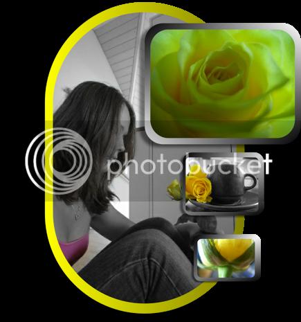 Rosen-Collage Hghg