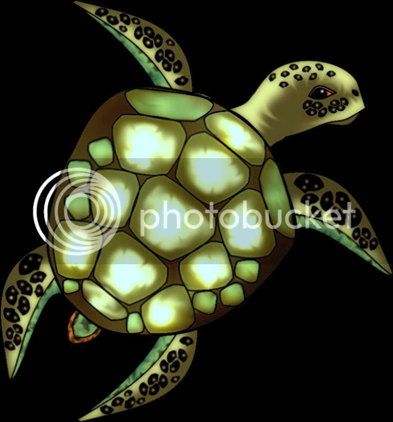 Schildkröte colorieren Umfrage  Vvvvv