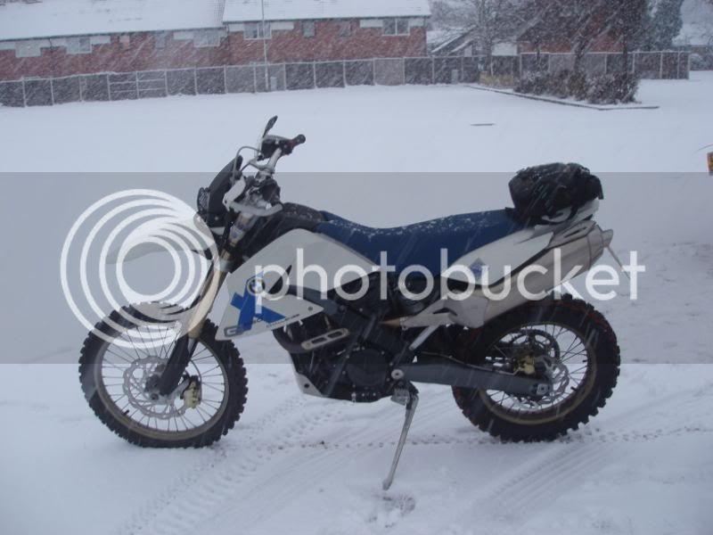 Pigging Snow P1310005