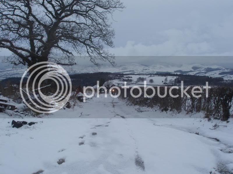 Pigging Snow P1310015