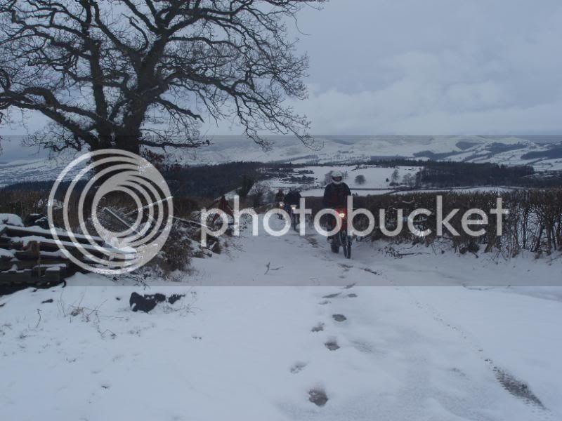 Pigging Snow P1310016