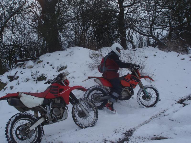 Pigging Snow P1310017
