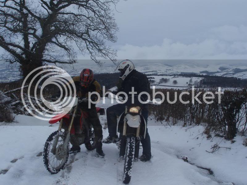 Pigging Snow P1310018