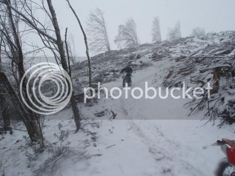 Pigging Snow P1310023