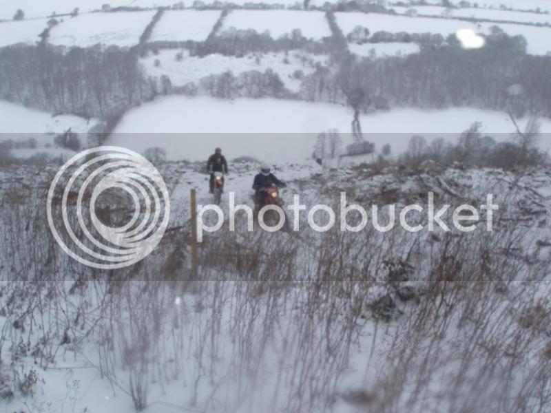 Pigging Snow P1310025