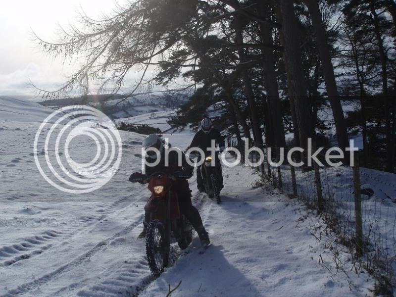 Pigging Snow P1310029