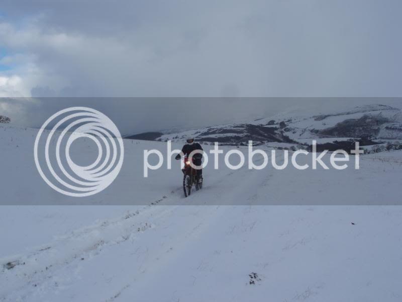Pigging Snow P1310032