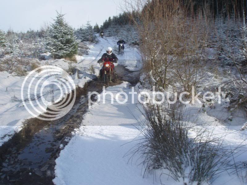 Pigging Snow P1310035